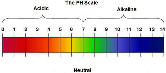 Normal vaginal ph