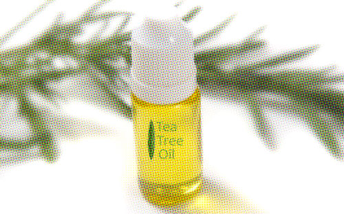 cure oil thrush with tea tree oil